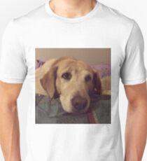 Gracie the Lab Retriever 2 T-Shirt