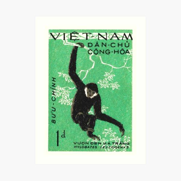 1961 Vietnam Gibbon Postage Stamp Art Print