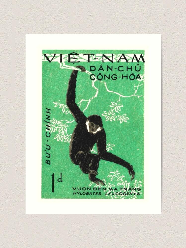 Alternate view of 1961 Vietnam Gibbon Postage Stamp Art Print