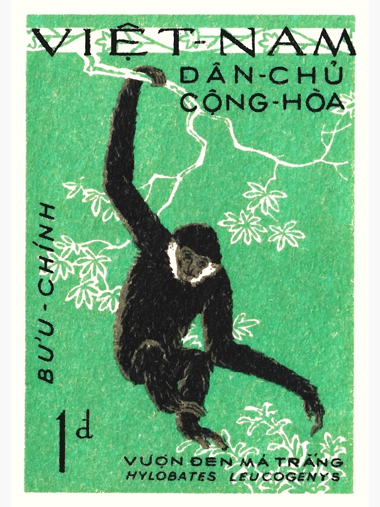 1961 Vietnam Gibbon Postage Stamp by retrographics