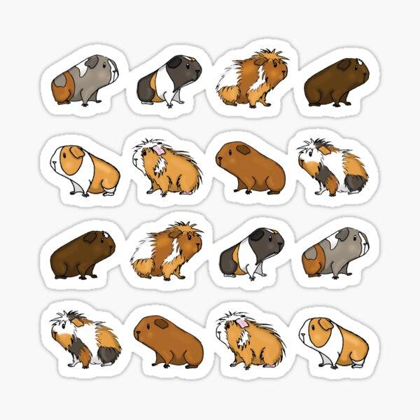 Guinea Pig Procession Sticker