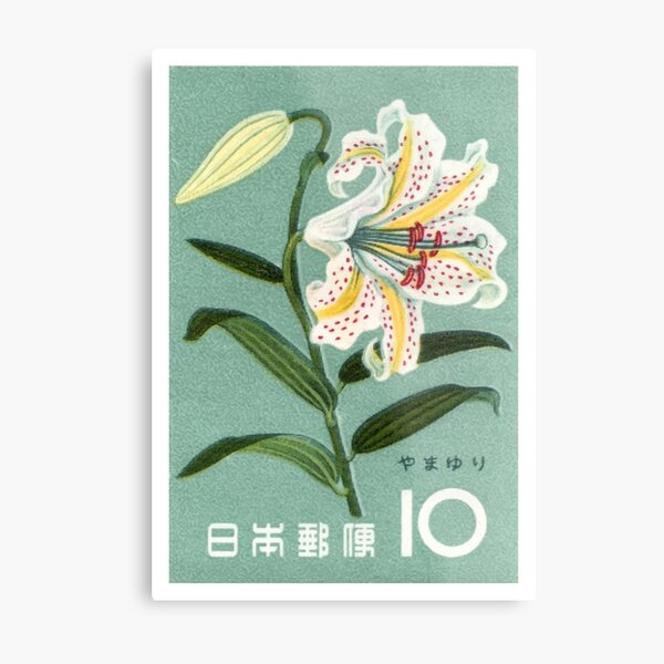 1961 Japan Lily Postage Stamp Metal Print