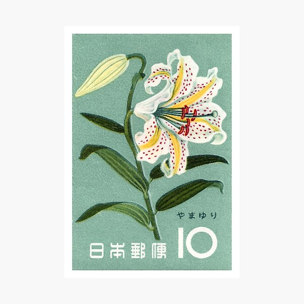 1961 Japan Lily Postage Stamp Photographic Print
