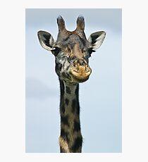 Giraffe smiles for her headshot Photographic Print
