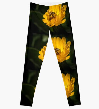 A Very Busy Bee Leggings