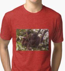 Orangutan Family - Borneo Tri-blend T-Shirt