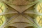 Vaulted Ceiling by Werner Padarin