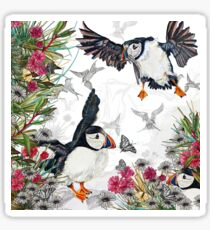 Drawing Paradise - Puffins Sticker