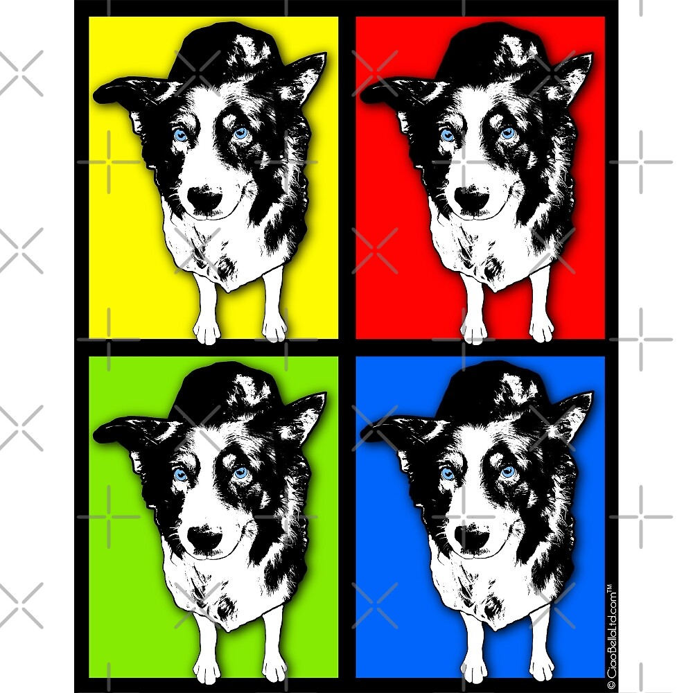 Black And White Pop Art Border Collie by CiaoBellaLtd