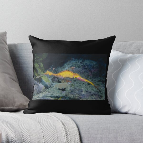 Weedy Seadragon male with eggs Throw Pillow