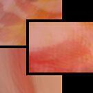 """abstract trittico 3 by Antonello Incagnone """"incant"""""""