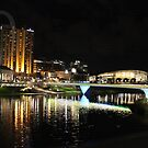 Adelaide by Night 30.7.14 by Tracey Hansell