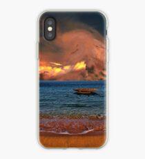 4279 iPhone Case