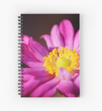 Morning Flower: Macro Photography Spiral Notebook