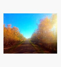 small town country road Photographic Print