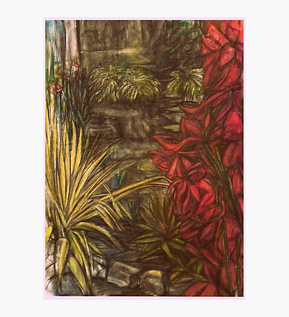 Flowers by Rock Pool Photographic Print
