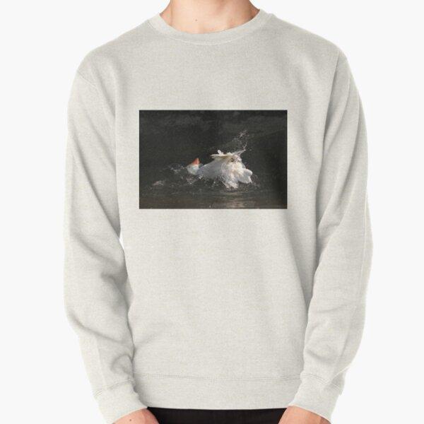 Goose wash Pullover Sweatshirt