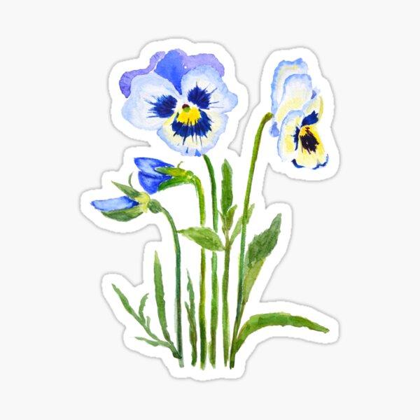 purple pansies watercolor  Sticker