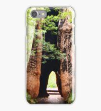 Valley of the Giants iPhone Case/Skin