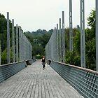 Parkland Bridge by Maggie Hegarty
