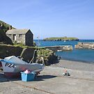 Mullion Cove by Steve plowman