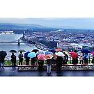 Budapest az esőben - 2012 by Ethel Yarwood