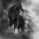 Belgian Sheepdog Art Calendar by wolfshadowphoto