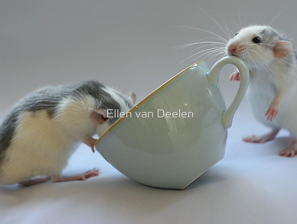 Coffee-time by Ellen van Deelen