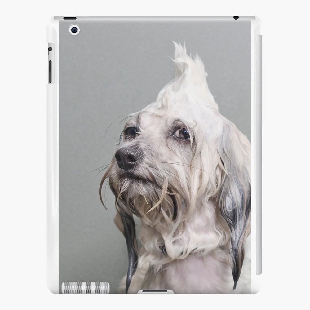 Wet Dog, Oscar iPad Cases & Skins