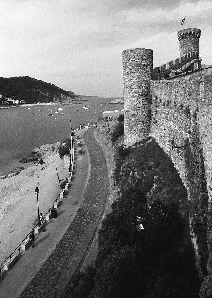 From the Castle Wall by James2001