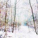 Winter Wonder Woodland by Vicki Field