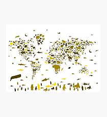 world map animals 2 Photographic Print