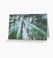 Mystical UFO haunted forest Greeting Card