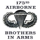 Jump Wings - 173rd Airborne - Brothers in Arms by Buckwhite