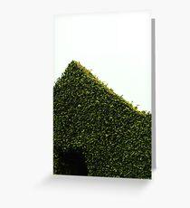 Ficus Greeting Card