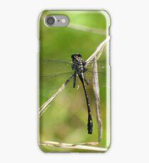 Dragon Hunter iPhone Case/Skin
