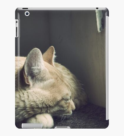Beauty Is a Sleeping Cat  iPad Case/Skin