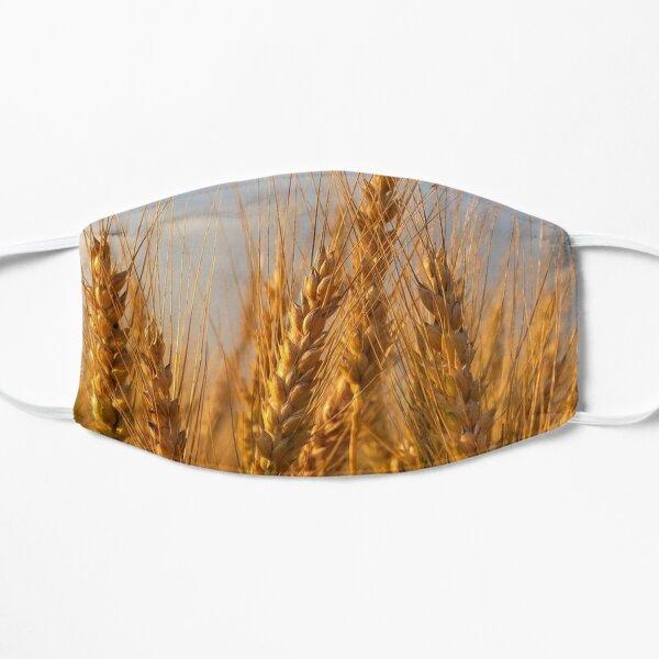 Barley Flat Mask
