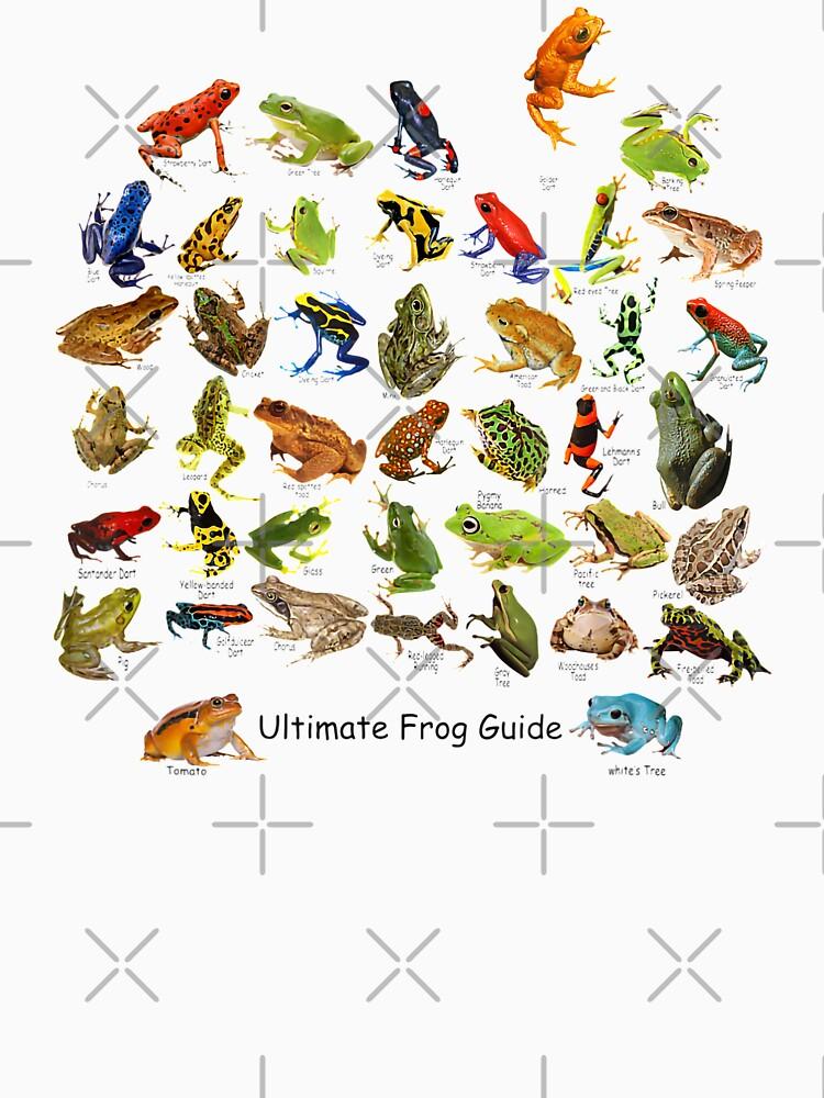 Ultimate Frog Guide by Prettygrafik