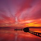 Skyfire by Len  Gunther