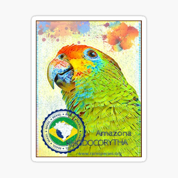 Red-browed Amazon Project Sticker
