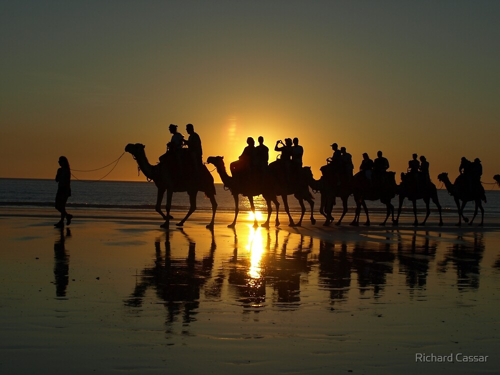 Cable Beach Camels at Sunset by Richard Cassar