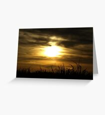 Sunset over Cane Fields Greeting Card