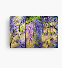 Wisteria Blooming - Triptych Canvas Print