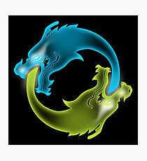 Two Dragons, two Brothers Photographic Print