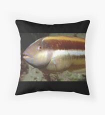 Maori Wrasse Throw Pillow