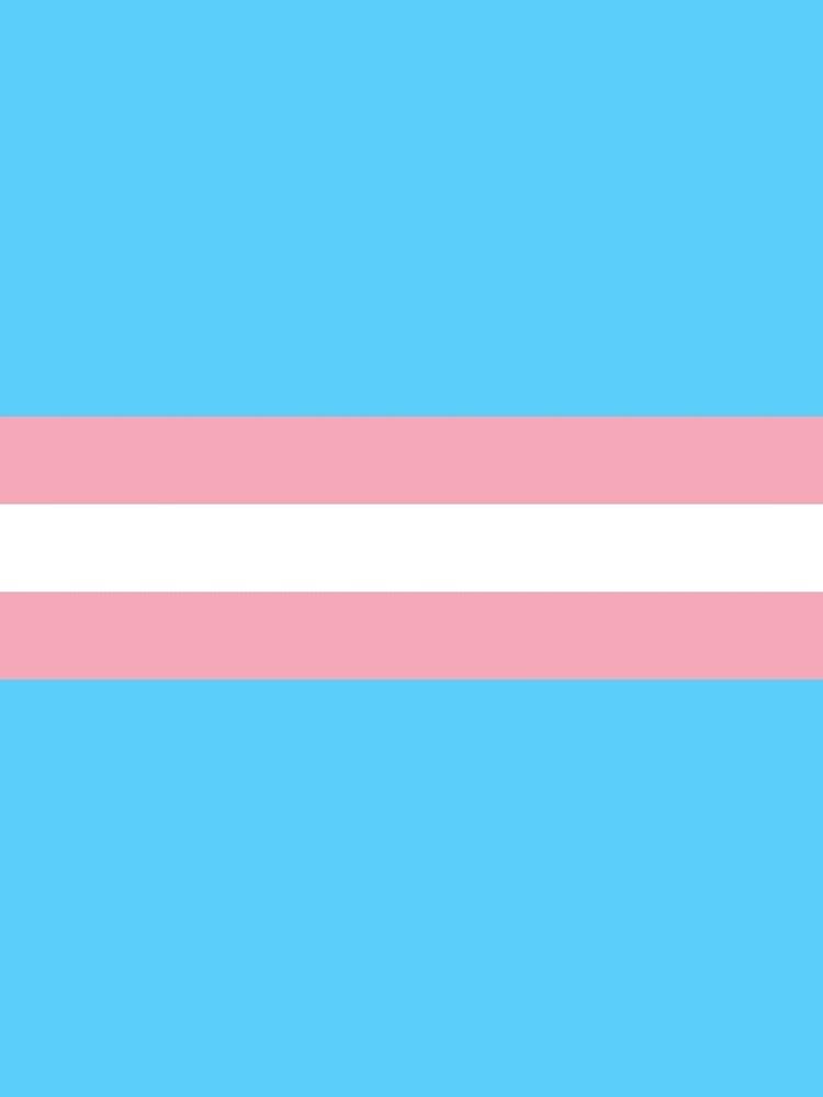 Bandera transgénero de baiiley