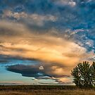Light Storm On The Plains by Gregory J Summers
