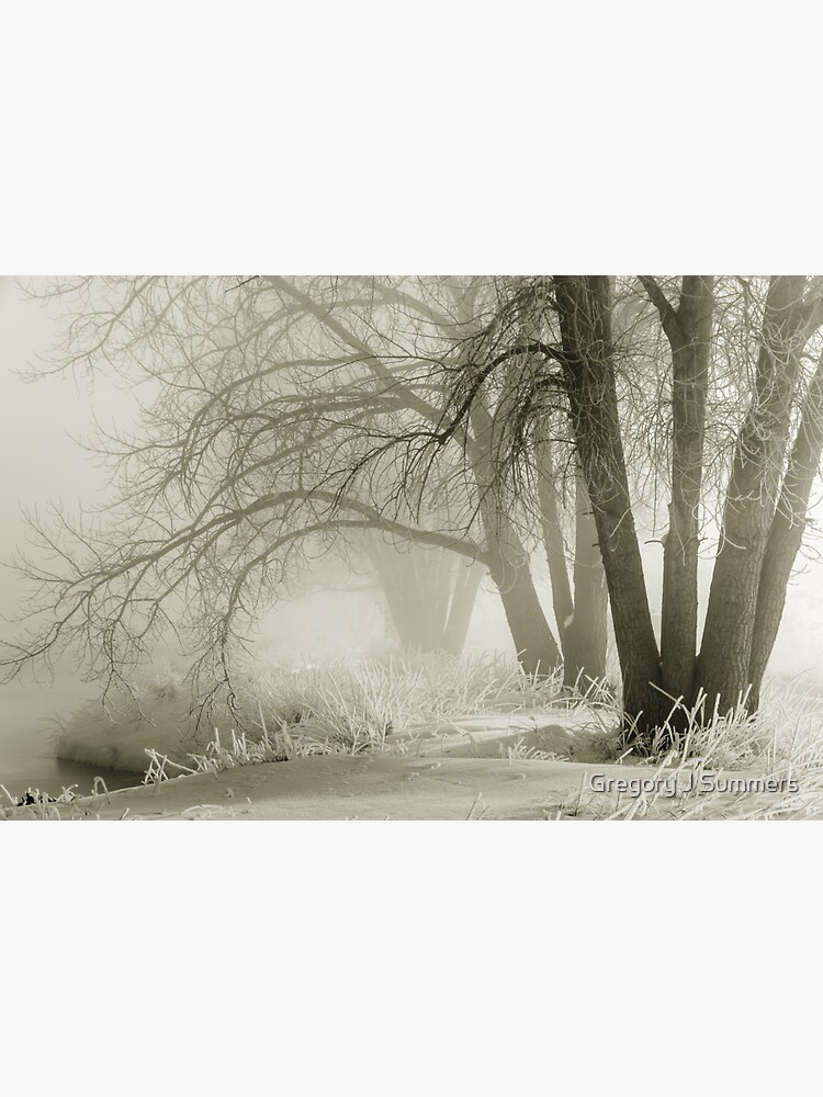 Ghosts In The Mist by nikongreg