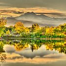Golden Moments, Gilded Dreams by Gregory J Summers